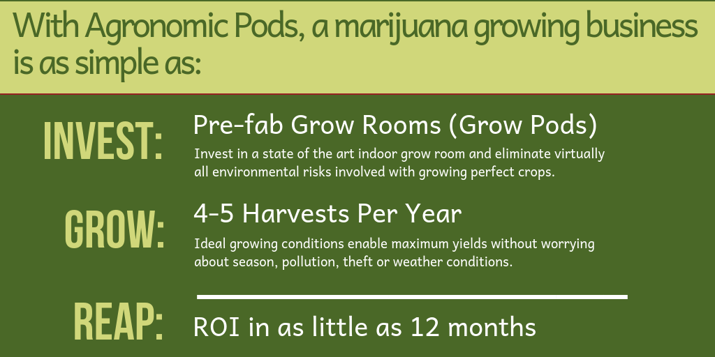 Invest, Grow, Reap with your own marijuana grow business