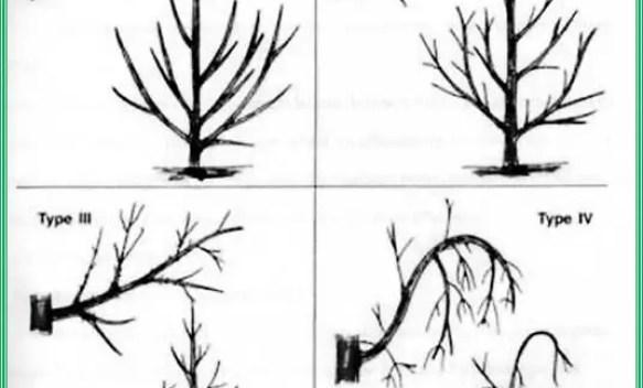 Fig. N°(11): schéma d'un mini-diffuseur  Source (Léopold RIEUL, Pierre RUELLE, 2003)