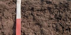 Mécanismes de dégradation de la fertilité chimique des sols