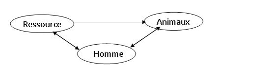 Figure 1 : Représentation simplifiée du système d'élevage (LANDAIS, 1992)