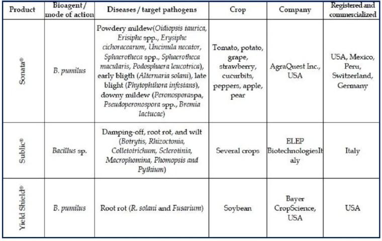 Tableau 3 Biopesticides bactériens appartenant au genre Bacillus homologués et utilisés comme agents de biocontrôle. Source: Cawoy et al., 2012.