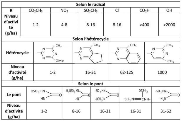 Tableau 4 : Niveaux d'activité des sulfonylurées selon leurs constituants