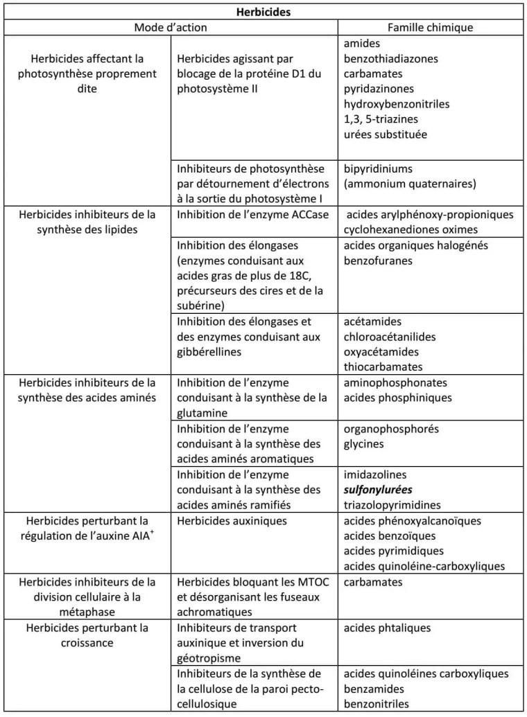 Tableau 1 : Classification des herbicides selon leur mode d'action (Calvet et al. 2005)