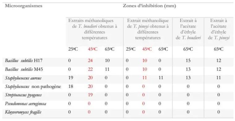 Tableau 2 : Zones d'inhibitions des différents extraits de Terfezia boudieri etTirmania pinoyi (Chellal et Lukasova., 1995).