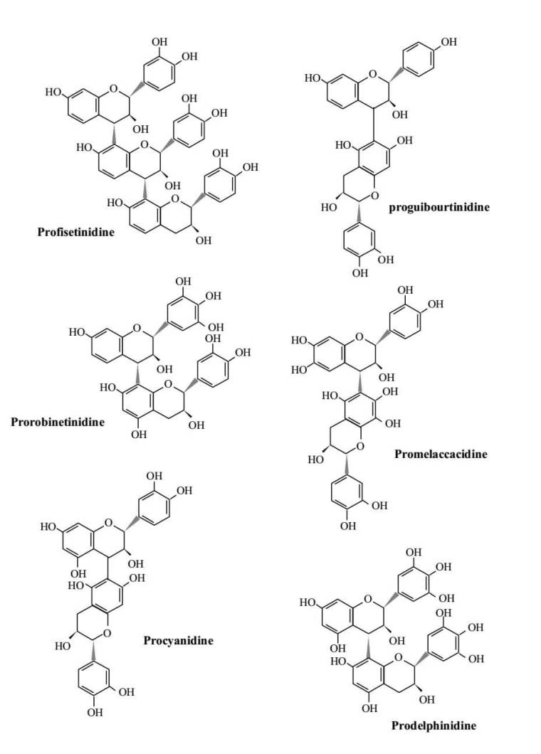 Figure 3 : Quelques proanthocyanidines sélectionnés. (SEIGLER 1998)
