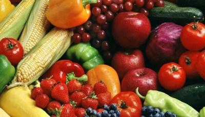 Quelles différences entre acides phénols, flavonoides, tannins… ?