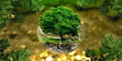 Définition de la pollution