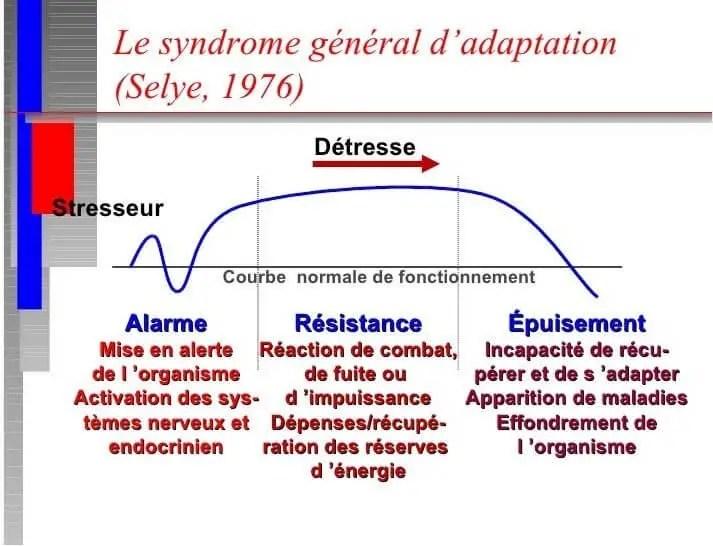 Figure N°10: syndrome général d'adaptation (BARTOLAMI ,2007)