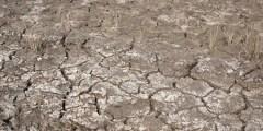 Les mécanismes de la salinisation des sols