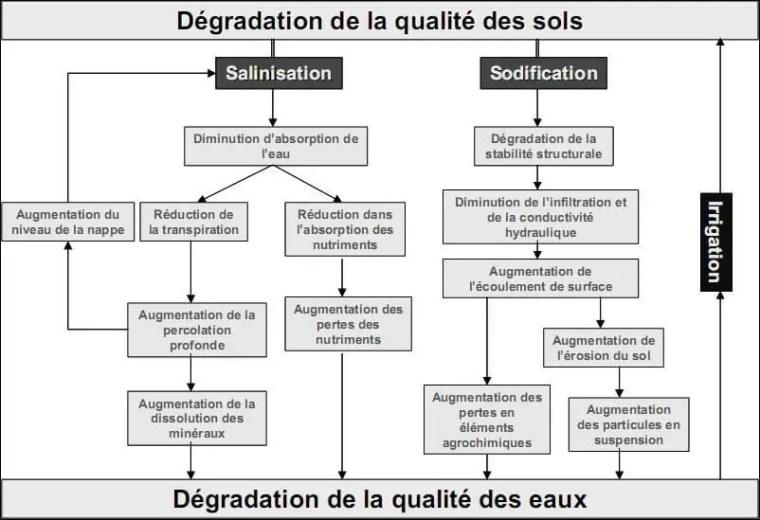 Figure 4. Processus de dégradation de la qualité des sols suite à l'irrigation (Lahlou et al,2002).