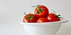 Variétés de la tomate