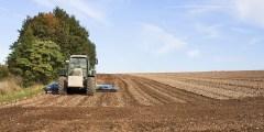 La préparation du sol pour un verger