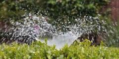 Evaluation des besoins en eau des cultures