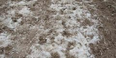Origine de la salinité des sols