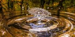 Les facteurs contrôlant la composition chimique des eaux