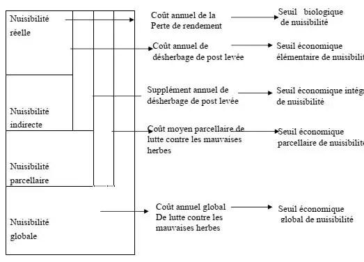 Fig. n °02 : Seuils de nuisibilité des mauvaises herbes d'après (CAUSSANEL ,1996)