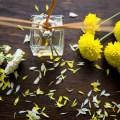 كيفية إدراج نبات ما فى قائمة النباتات الطبية والعطرية
