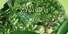 كتاب .. زراعة الدلاح (البطيخ) في المغرب