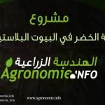 مشروع .. زراعة الخضر في البيوت المحمية