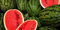 البطيخ Watermelon