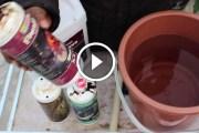 فيديو .. المحلول المغذي وطريقة القياس