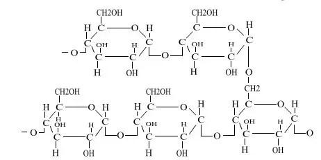 مركـب الأميلـوبكتين Amylopectin
