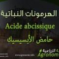 حامض الإبسيسيك Acide abcissique