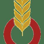 OFFICE ALGÉRIEN INTERPROFESSIONNEL DES CÉRÉALES – COOPÉRATIVE DES CÉRÉALES ET LÉGUMES SECS DE TIARET