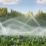 كتاب تحاليل مياه الري والتربة والنبات