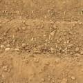 إجهاد التربة الرأسي