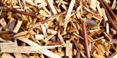 لمحة تاريخية عن تقنية الخشب الغصني المجزأ Le bois raméal fragmenté
