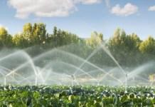 manual de riego para agricultores
