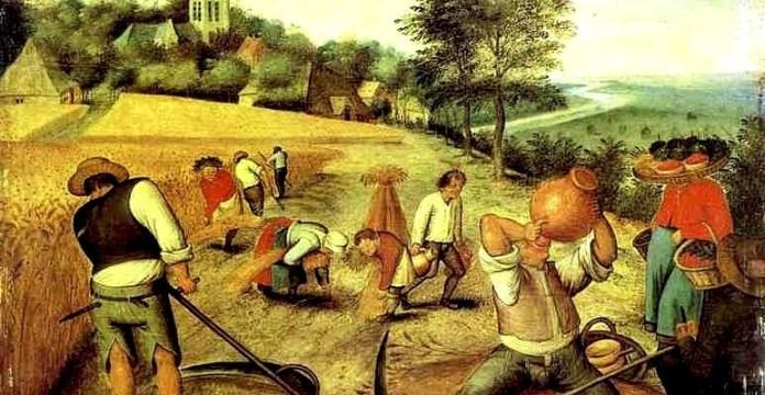 Primera civilizaciones agronomas