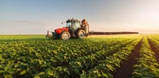 diferencias entre agricultura intensiva y extensiva