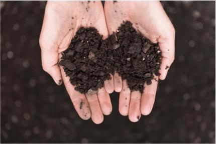 Agregados do solo: benefícios e como evitar a agregação