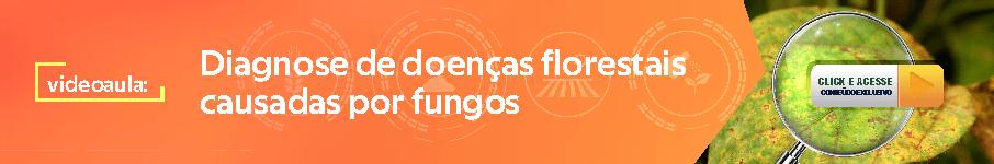 https://materiais.agropos.com.br/videoaula-diagnose-fungos-prof-acelino