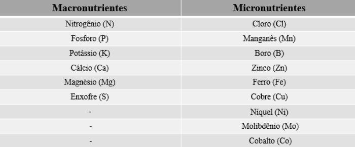 macronutrientes e micronutrientes