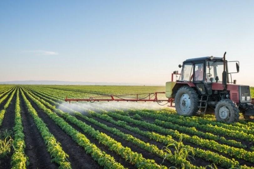 Inseticidas: o uso e as técnicas corretas na agricultura!