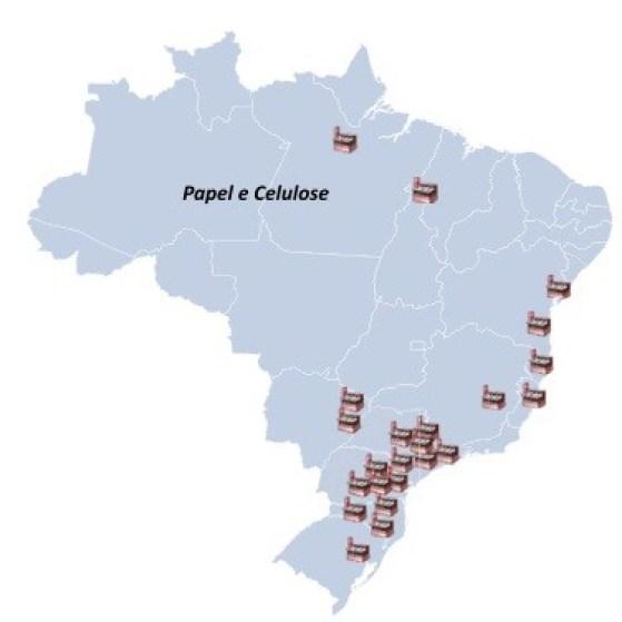 Distribuição da produção de papel e celulose no Brasil