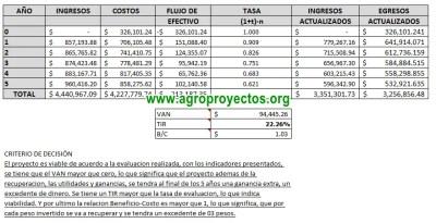 Corridas Financieras FAPPA y PROMETE 2015