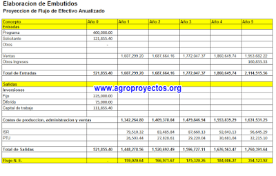 Ejemplo del flujo de efectivo anualizado proyecto INTEGRA-INAES