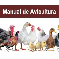 Manual de Avicultura, descarga gratis PDF