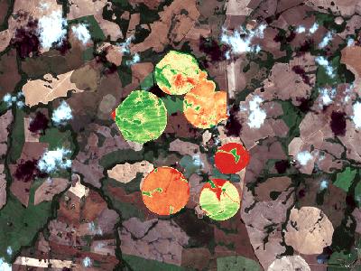 NDVI em lavoura com 7 pivôs (imagens de satélite)