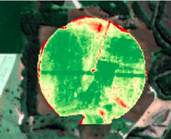 NDVI em lavoura de milho (imagens de satélite)