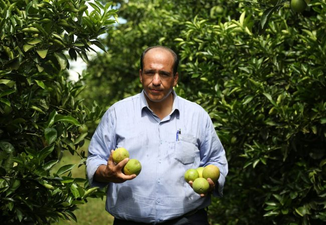 Stocler Andrade - Consultor Agrícola