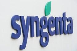 Syngenta-LogoSesgado web