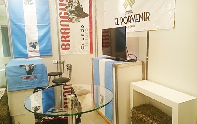 ElPorvenir-Stand w