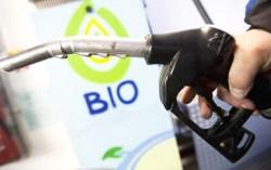 Biodiesel argentino w