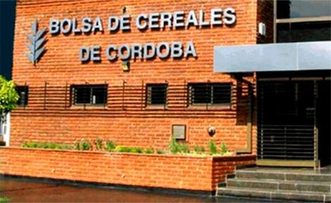 BCCBA-Edificio 1 w