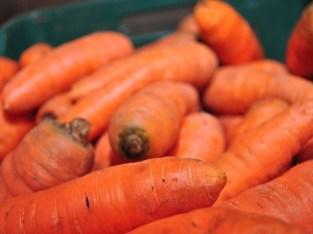 Zanahorias Premium